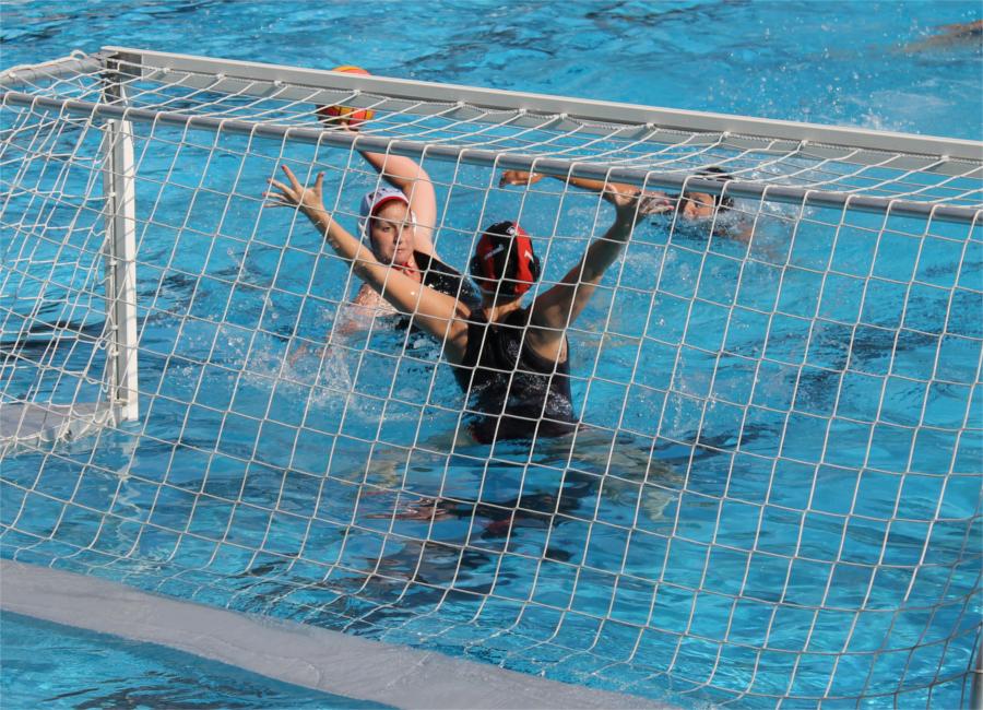 Die Wasserballerinnen des ETV spielen in der Bundesliga.