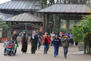 Dass so viele Flüchtlinge mitgekommen sind, hat die Veranstalter gefreut. Foto: Moritz Gerlach