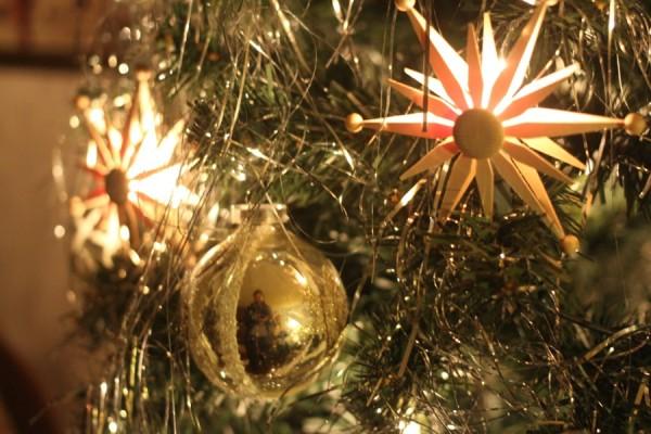 Am 13. Dezember startet der Niendorfer Weihnachtsbaumverkauf. Foto Ada von der Decken