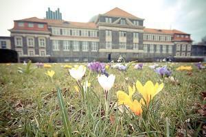 Uni Hamburg: Hier sind rund 41.000 Studenten in 149 Studiengängen eingeschrieben. Foto: