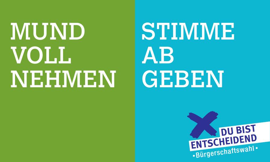 Am 15. Februar wird die Bürgerschaft gewählt. (Screenshot: hamburg.de)