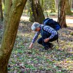 Auch mal im Unterholz suchen, hier findet man so machen Kräuterschatz. Foto: Nicolas Döring