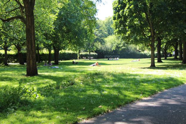 Der Wehbers-Park am Hamburg-Haus lädt zum Verweilen ein. Foto: