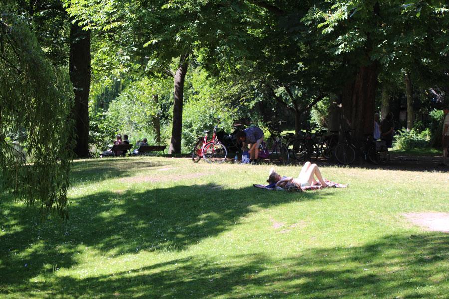 Der Weiher-Park lädt zum Sonnenbaden ein. Foto: Niklas Heiden