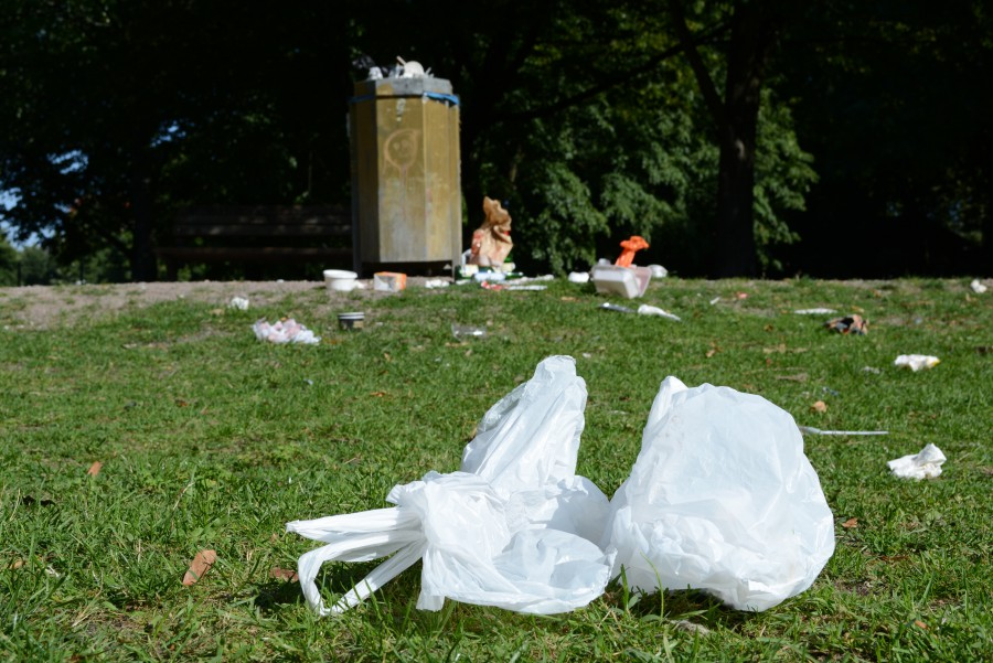 Die neue Abfall-App der Stadtreinigung