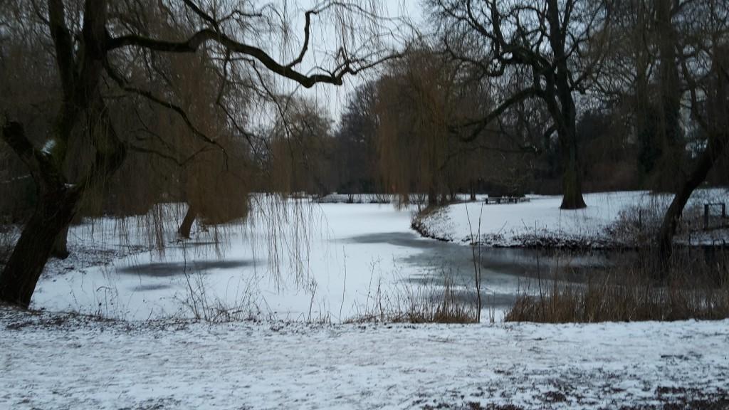 Es ist kalt in Eimsbüttel. Foto: Jan Hildebrandt