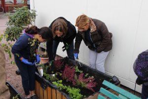 Kleine Schaufeln helfen: Alle gespendeten Pflanzen bekommen einen Platz in den Hochbeeten. Foto: Ida Wittenberg
