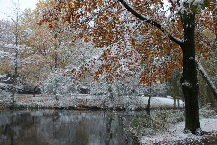 Der erste Schnee dieses Jahres fiel am 8. November. Foto: Karoline Gebhardt