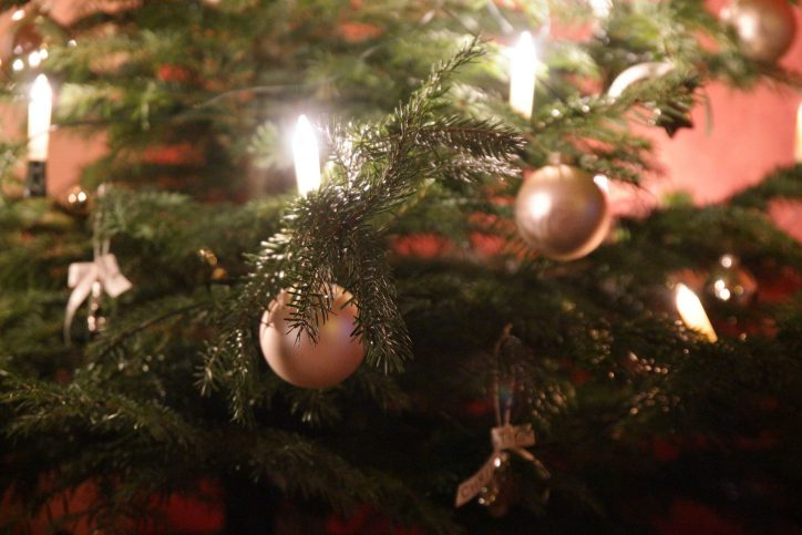 Weihnachtsbaum schon gekauft? In Niendorf findet ihr den Richtigen. Foto: Dennis Imhäuser