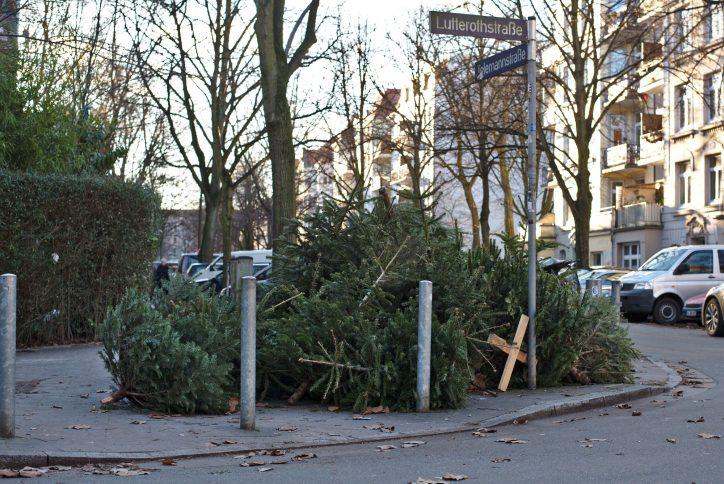 Stadtreinigung sammelt Weihnachtsbäume ein