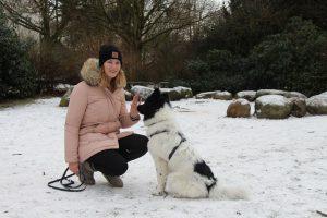"""Dorothee kann es verstehen, dass man als Hundebesitzer vor allem bei Kindern und Joggern aufpassen muss. """"Zum Spazieren fahren wir sonst auch oft aus der Stadt heraus, an die Elbe oder in die Stellinger Schweiz. Es ist aber schade, dass vor der Haustür immer mehr Platz weggenommen wird, um Hunde frei laufen zu lassen. Ein kleiner begrenzter Bereich wäre zumindest schön."""" Foto: Carolin Martz"""