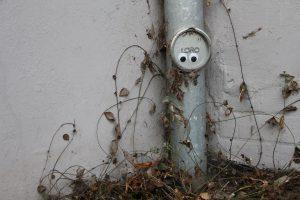 In Eimsbüttel gibt es so viele nette kleine Ideen zu entdecken. Selbst in der hintersten Ecke findet man hier noch einen Hauch von Street Art. (gesehen im Lastropsweg). Foto: Eimsbütteler Nachrichten