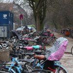 Die vorhandenen Fahrradständer reichen nicht aus. Foto: Karoline Gebhardt