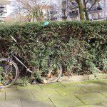 Dieses Fahrrad fühlt sich der Natur verbunden. Foto: Eimsbütteler Nachrichten