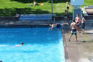... andere sind aktiver und springen immer wieder ins Wasser. Foto: Max Gilbert