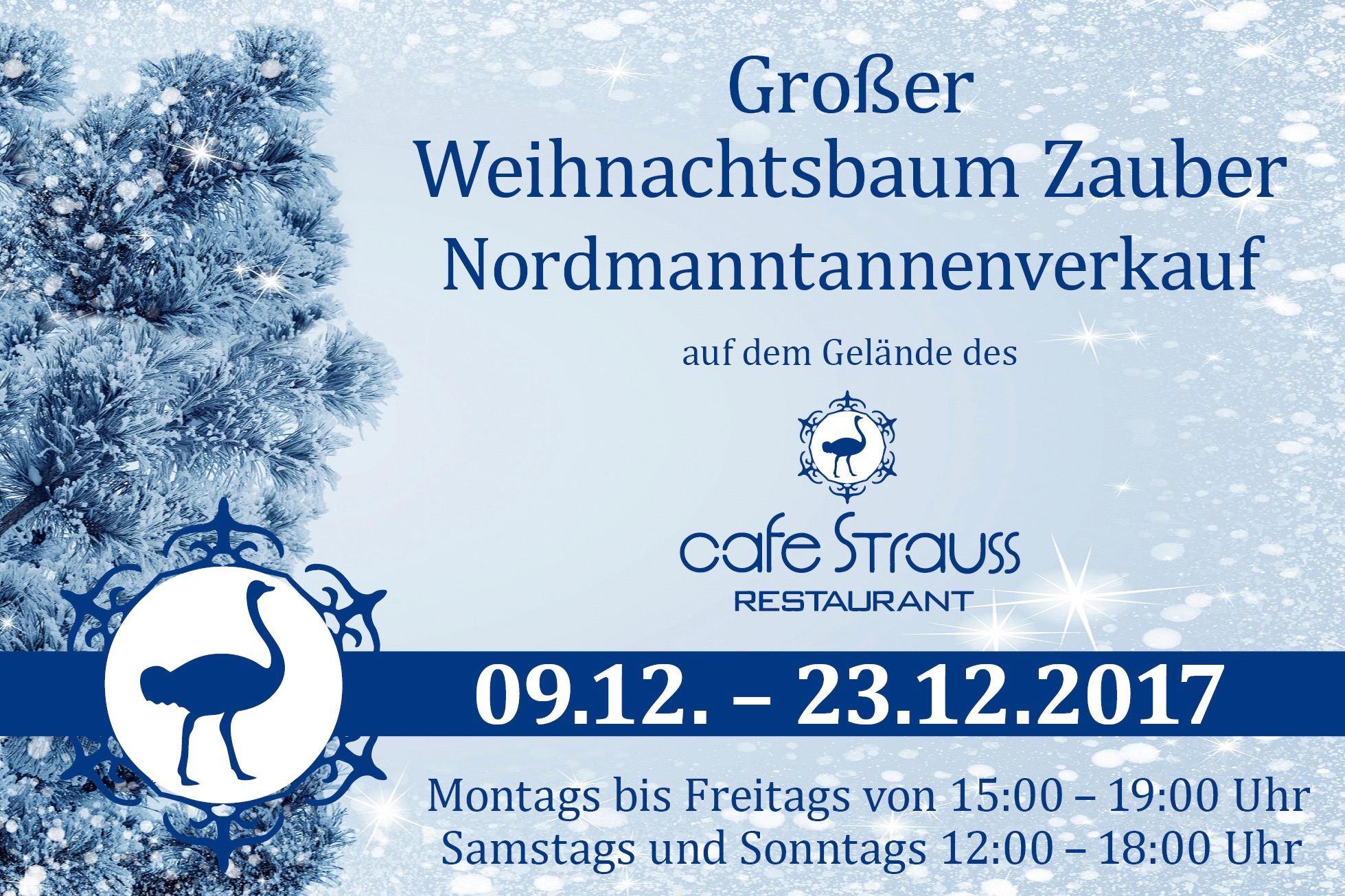 Weihnachtsbaumverkauf cafe strauss eimsb tteler nachrichten - Weihnachtsbaumverkauf hamburg ...