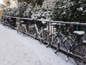 Fahrräder im Winterschlaf. Foto: Lena Schnüpke