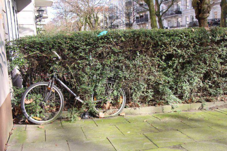 Dieses Fahrrad fühlt sich der Natur verbunden. Foto: Leon Battran