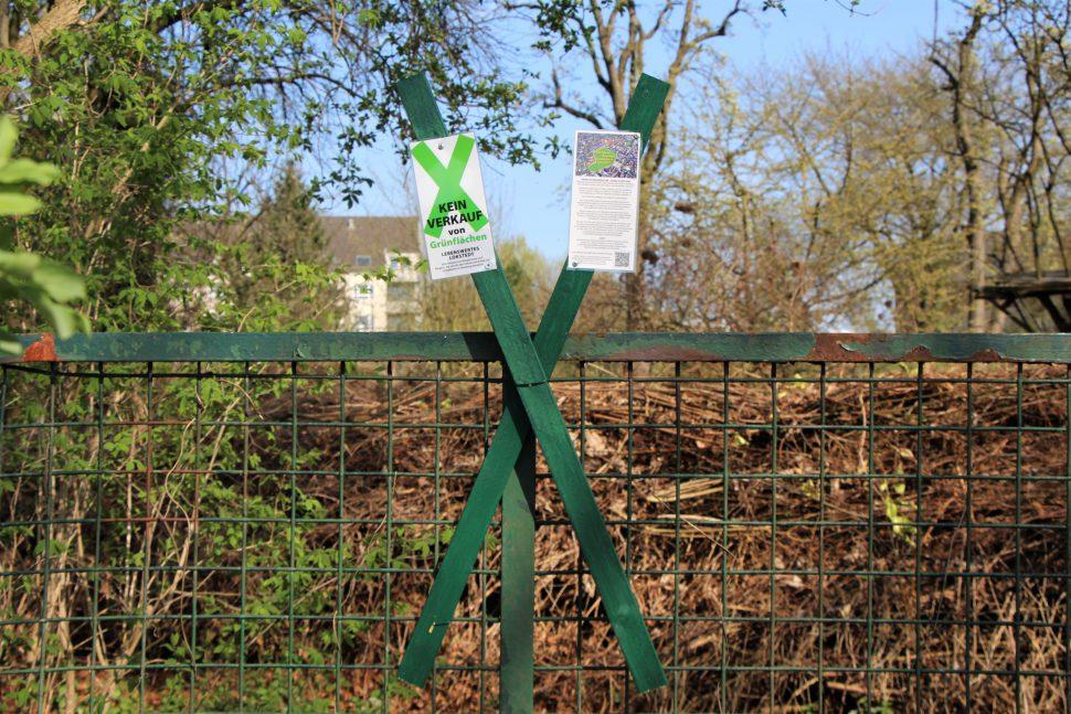 In Lokstedt werden vermehrt grüne Kreuze aufgestellt, mit denen Anwohner und Kleingärtner ein Zeichen gegen den geplanten Verkauf von Grünflächen an Beiersdorf setzen. Foto: Margarita Ilieva
