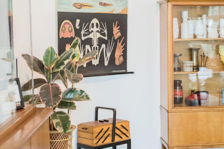 Neben Vintage-Möbeln werden auch Pflanzen in dem Laden zu finden sein. Foto: Oh dear Hamburg