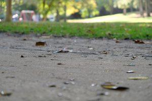 Müllverschmutzung im Unna-Park Foto: Maximilian Neumann