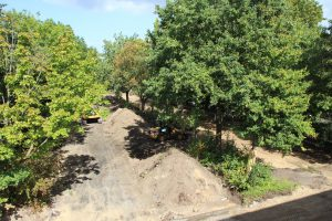 Sanierung der P+R-Anlage am Tierpark Hagenbeck