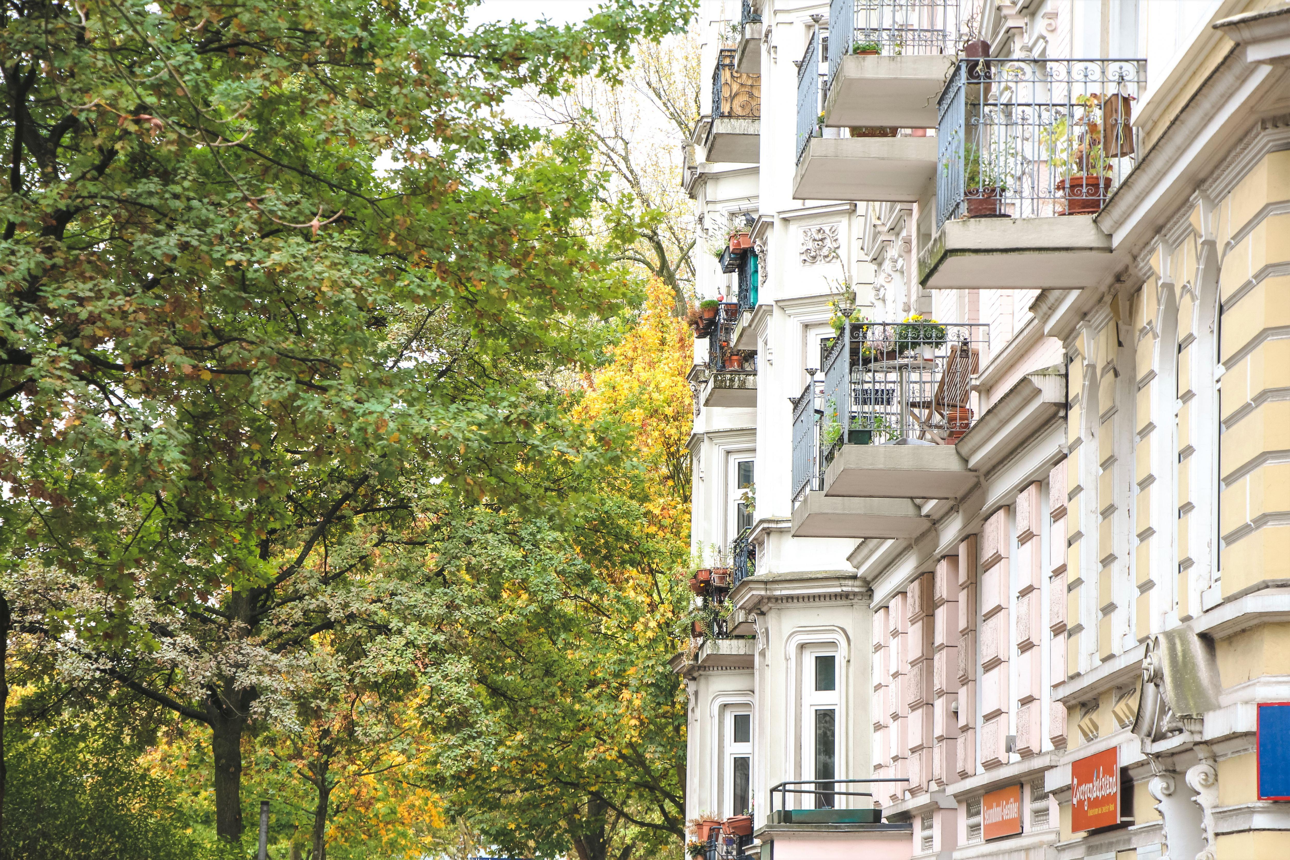 Zahlreiche Bäume und mehrgeschossige Wohngebäude säumen die Lappenbergsallee. Foto: Alicia Wischhusen