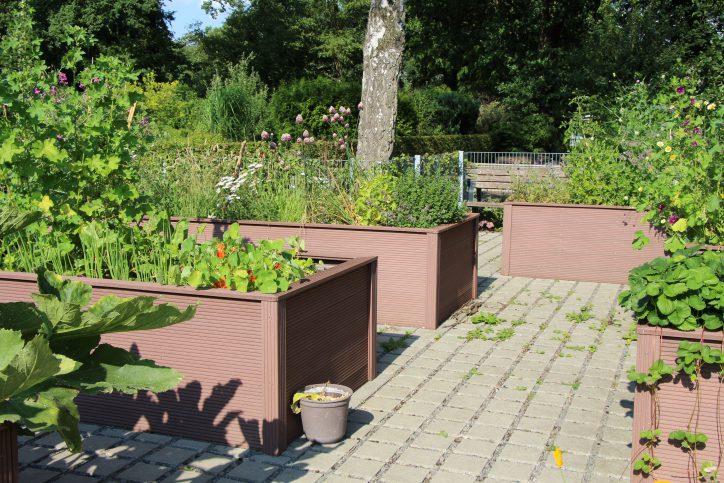 """Kleingartenverein """"Döhrnkamp"""" gewinnt Preis"""