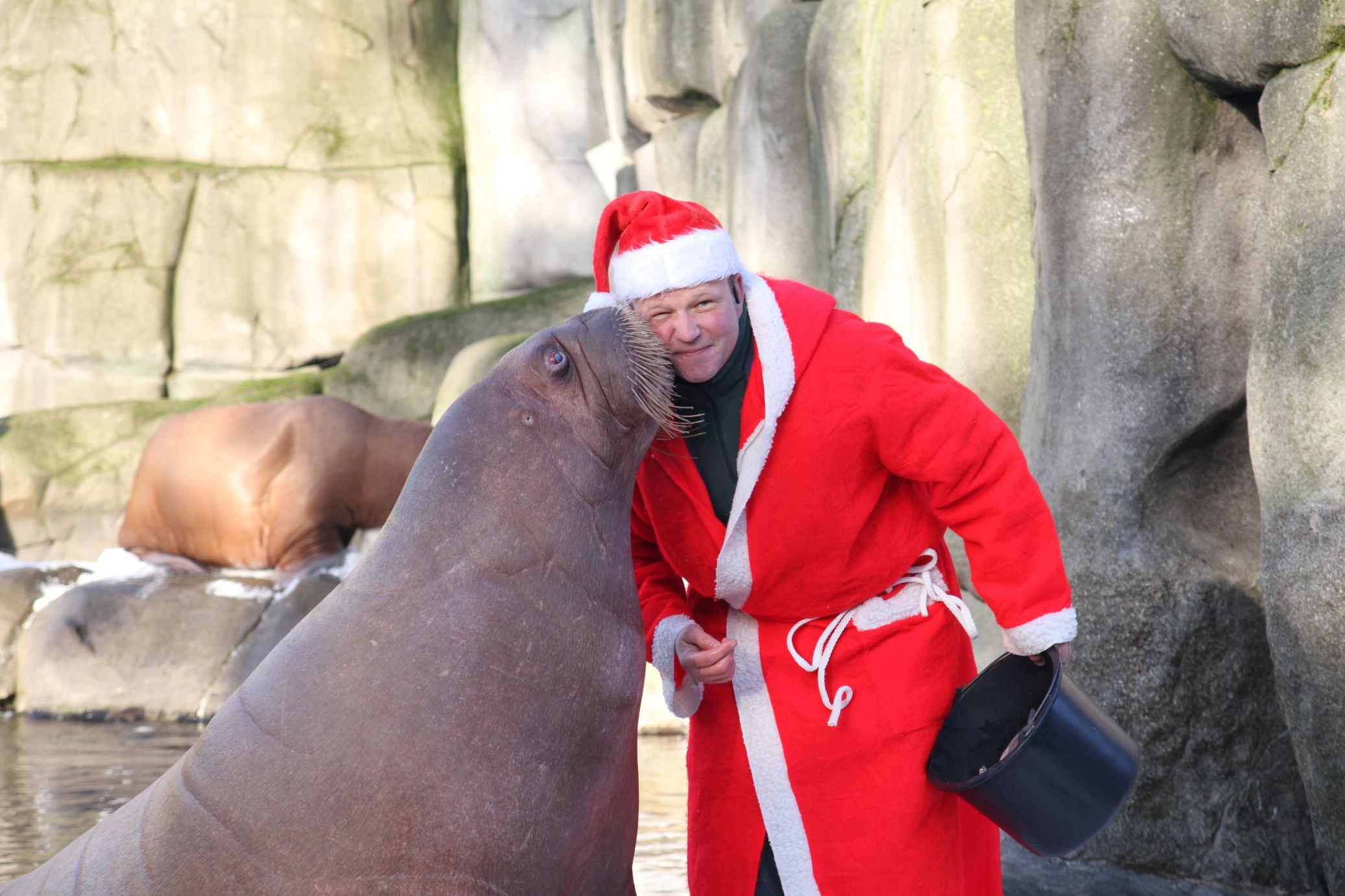 Zum Dank gab es einen Kuss. Foto: Tierpark Hagenbeck