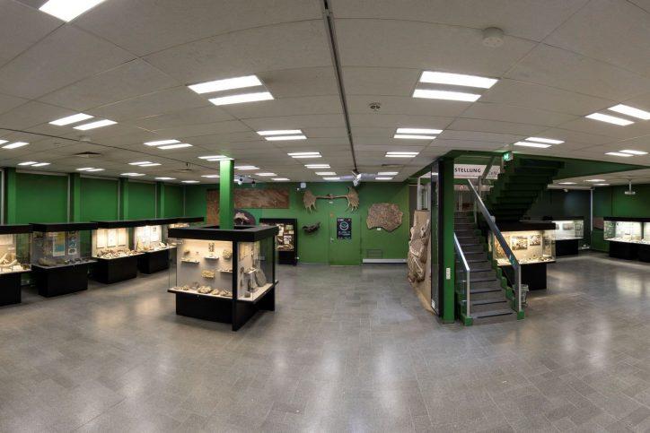 Anfassen und mitmachen ist im Geologisch-Paläontologischen Museum erwünscht. Foto: UHH, RRZ/MCC, Mentz