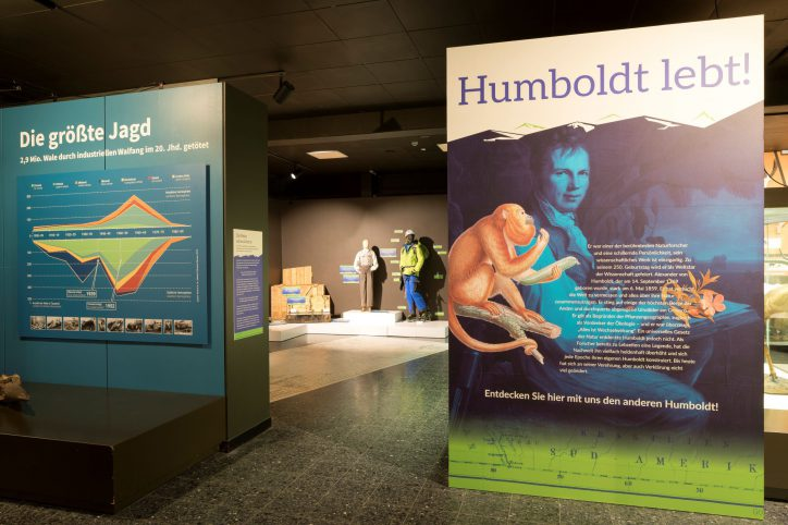 """Die Sonderausstellung """"Humboldt lebt!"""" ist unter anderem im Zoologischen Museum zu sehen. Foto: UHH, RRZ/MCC, Mentz"""