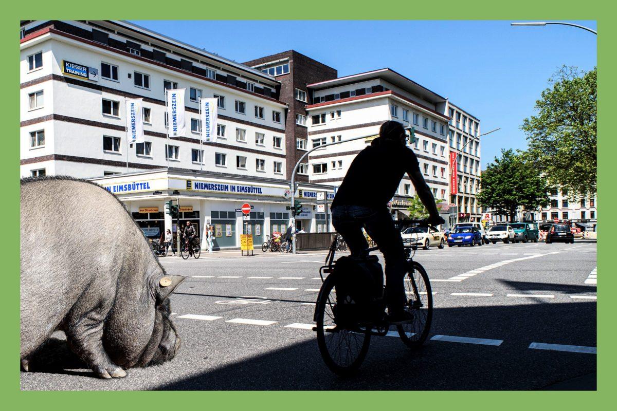 Magazin 18: Themenheft Mobilität