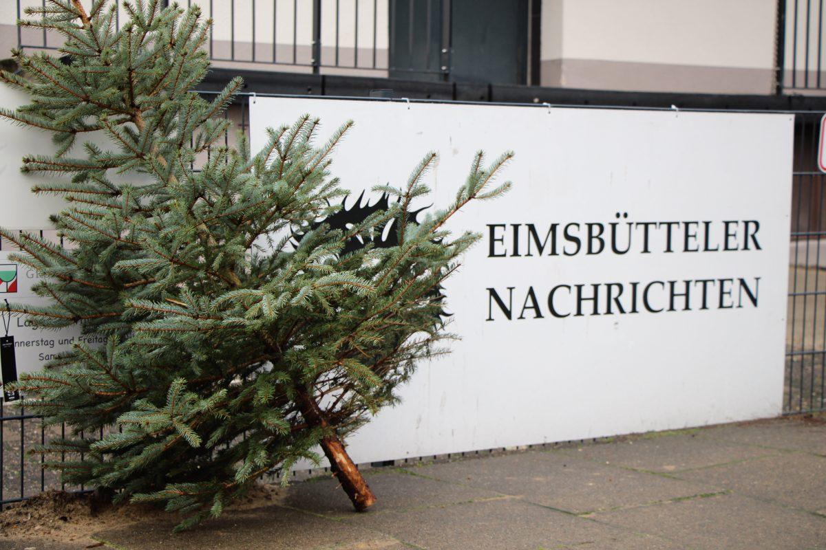 Weihnachtsbaum entsorgen: Stadtreinigung holt ausgediente Bäume ab. Foto: Alicia Wischhusen