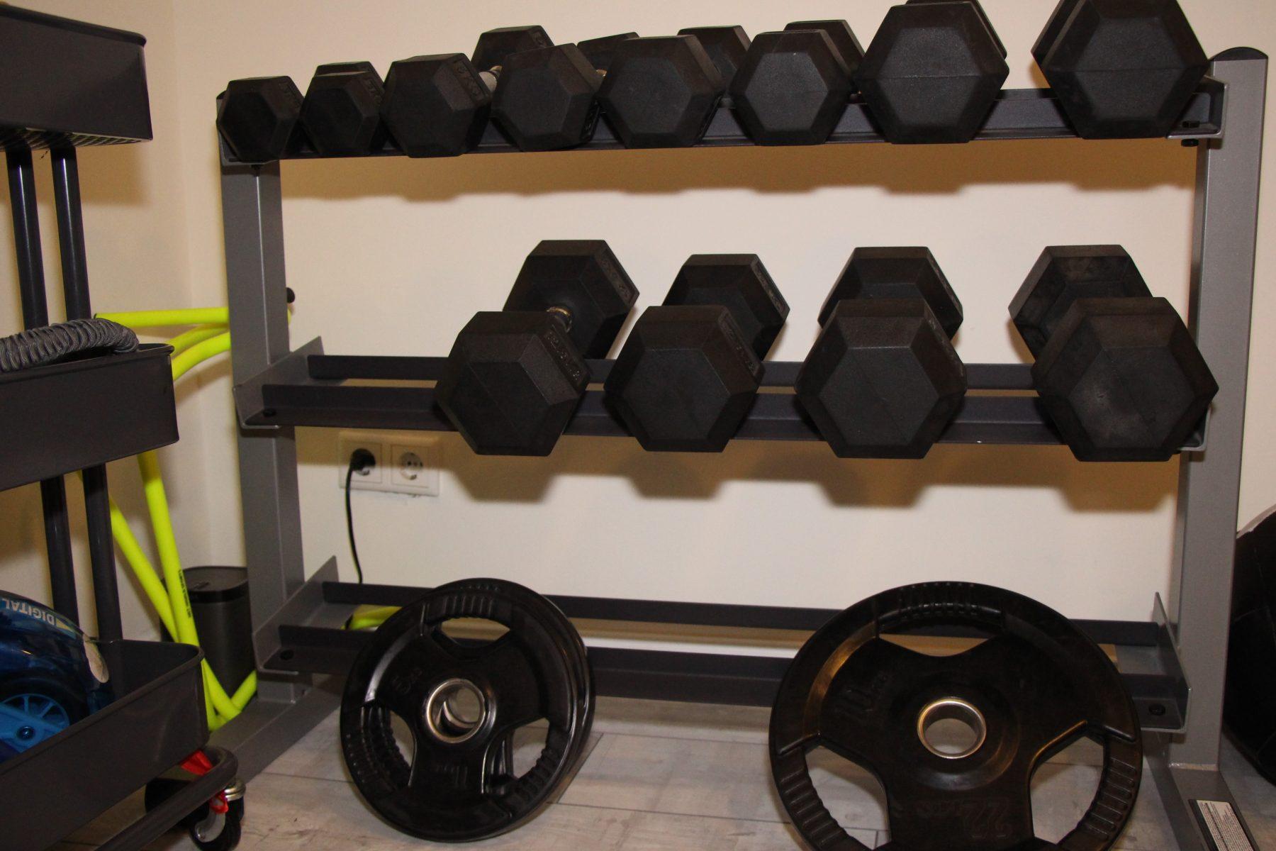 """Training mit Gewichten im """"Push"""". Foto: Sophia Kleiner"""