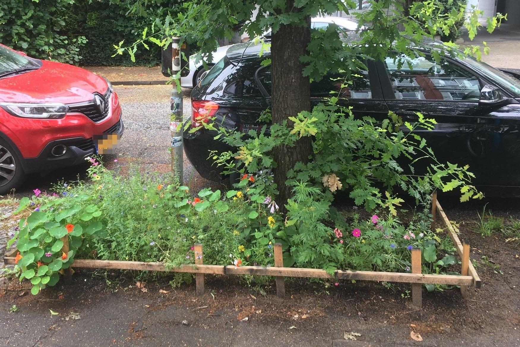 So sah das Nachbarschaftsbeet vorher aus.