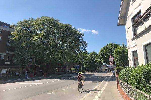 Schnelsen Frohmestraße Shopping Meile